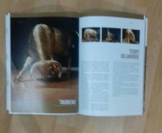 double pages dans le magazine lamborghini bullsday page 2 et 3